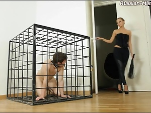 Caged male humiilated by his mistress