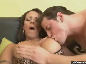 Foxy brunette tranny babe sucking on a hard cock