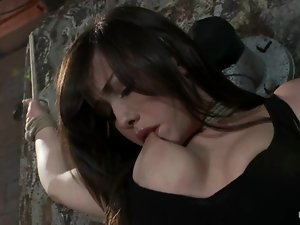 Jennifer White gets bound and enjoys some naughty toying in BDSM vid