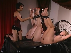 Three sexy girls get tied up in hot foot fetish video