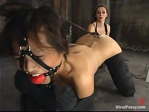 Asian Nyomi Zen Tortured and Toyed in Bondage Lesbian Video