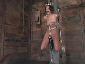 Hog tied and gagged Gina Caruso in hot BDSM video