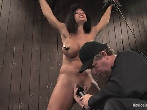 Stunning Lisa Ann gets bounded and toyed in a wooden cabin