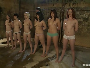 Six sexy chicks get tied up and humiliated by their master