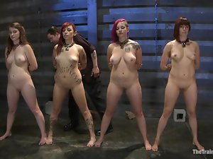 Four kinky bitches get bounded and suck big dicks