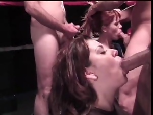 Watch a blowjob competition in a boxing ring