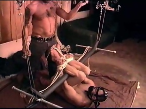 CBT hog tied ball bashing and anal play