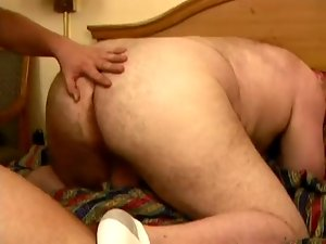 All Amateur Bears 5