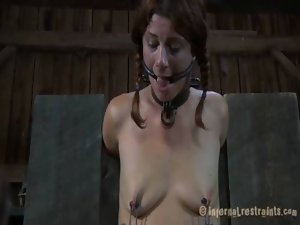 Taming a lusty gagged honey