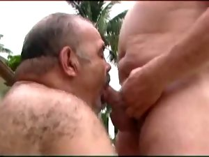 Two Sensual Daddy Bears Going At It
